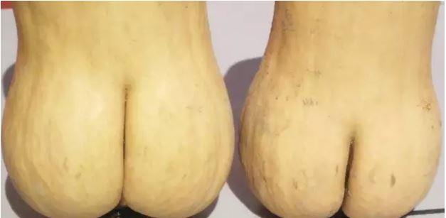 1709030111 - [후방주의!] 기분이 이상해질 만큼 야한 '19금' 과일과 야채 (사진 19장)