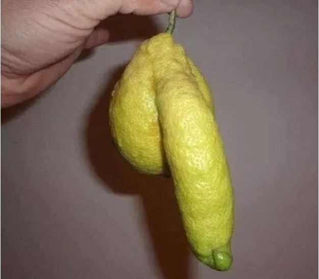 1709030113 - [후방주의!] 기분이 이상해질 만큼 야한 '19금' 과일과 야채 (사진 19장)