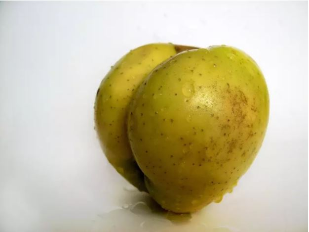 1709030114 - [후방주의!] 기분이 이상해질 만큼 야한 '19금' 과일과 야채 (사진 19장)