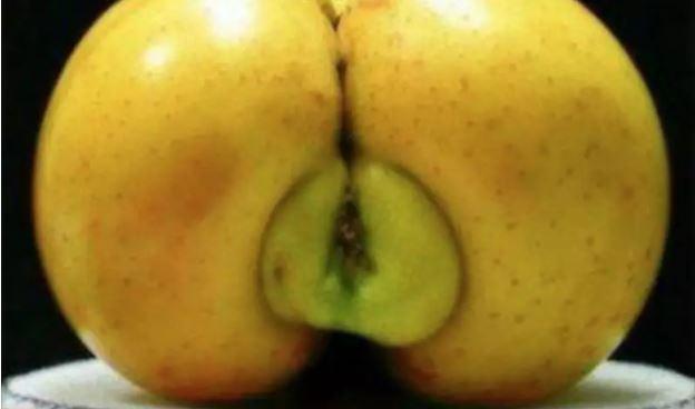 1709030115 - [후방주의!] 기분이 이상해질 만큼 야한 '19금' 과일과 야채 (사진 19장)