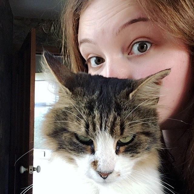 20589452 201991307001069 6774331102845730816 n - 주인과 '셀카' 찍기 싫은 고양이들의 반응 (사진 15장)