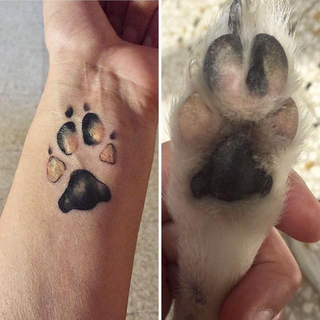 awebic-tatuagens-cachorros4