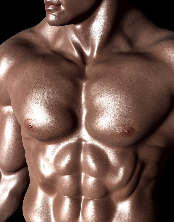 bodybuilder 331671 960 720 - 남자의 '젖꼭지'가 존재하는 이유...'충격'