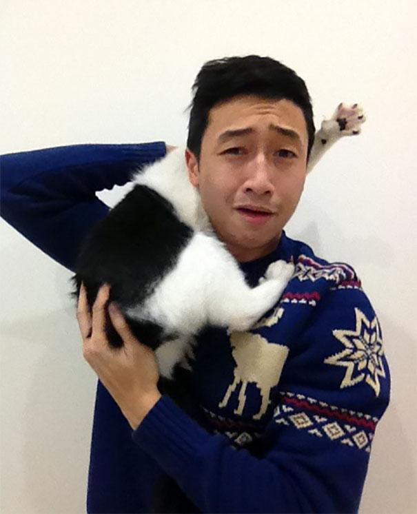 cats hate selfies 250 599161072aea3  605 - 주인과 '셀카' 찍기 싫은 고양이들의 반응 (사진 15장)