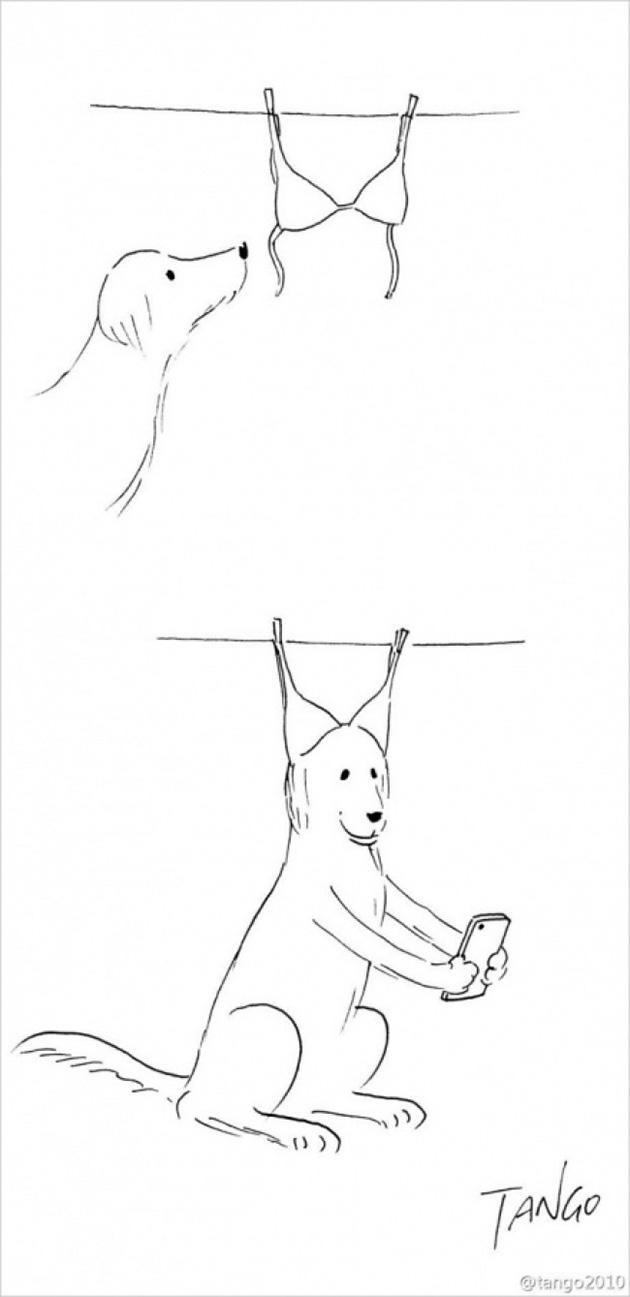 comic strips by tango 4 - 세상을 귀엽고 재치있게 표현하는 작가 '상하이 탱고' 연재 만화 16편