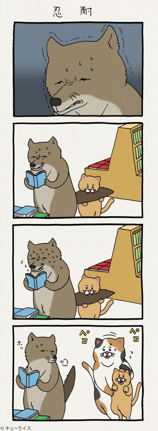 dog cartoon comics qrais japan 15 5989606d19cd1  605 - 우울한 당신을 웃게 해줄 '착한 티벳 여우' 4컷 만화