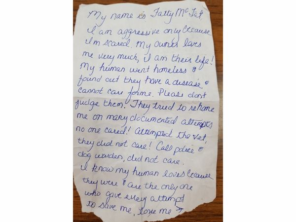 img 59ccfe7554011 - Woman Leaves A Dog In Front Of The Shelter With Heartbreaking Note
