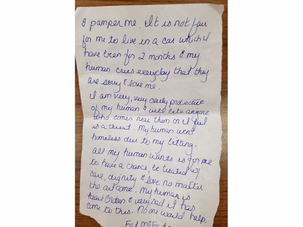 img 59ccfe889371e - Woman Leaves A Dog In Front Of The Shelter With Heartbreaking Note