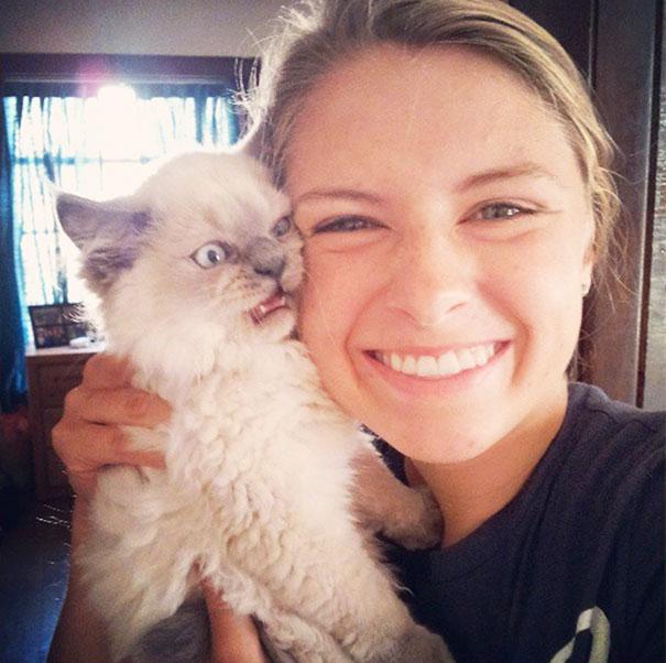 jamespucos - 주인과 '셀카' 찍기 싫은 고양이들의 반응 (사진 15장)