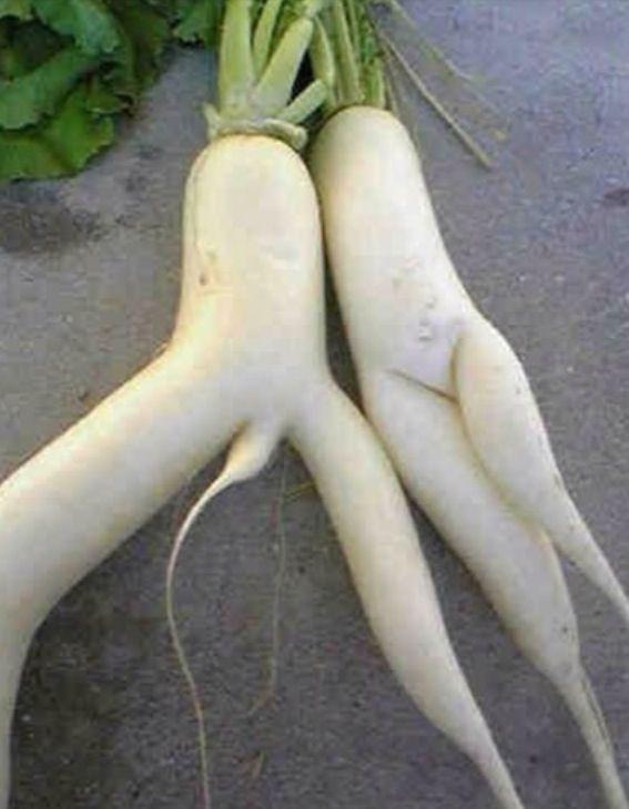 pinterest 1 - [후방주의!] 기분이 이상해질 만큼 야한 '19금' 과일과 야채 (사진 19장)
