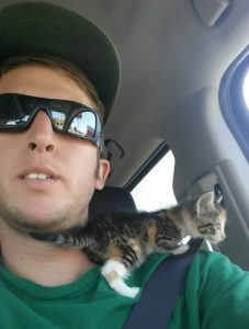 straybaby 600x793 227x300 - Driver Suddenly Finds Baby Kitten In Front Of Him. He Takes Her In The Car