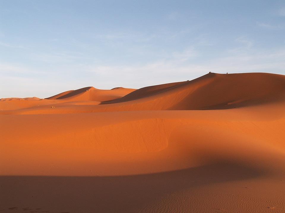 """travel 857086 960 720 - """"당신이 사막에서 버리고 갈 동물은?"""" 소름끼치게 들어맞는 심리 테스트!"""