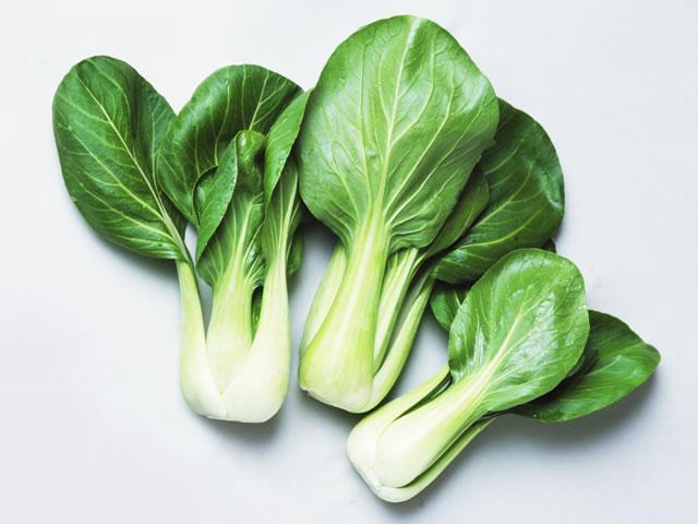 1 760 - 青梗菜の保存方法と中華レシピを大公開