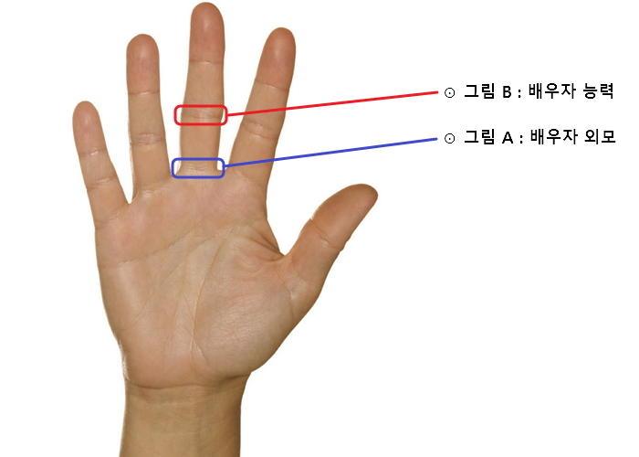 384nq66p4xco28nyggqo - 당신의 오른손을 통해 알아보는 미래 배우자의 '외모'