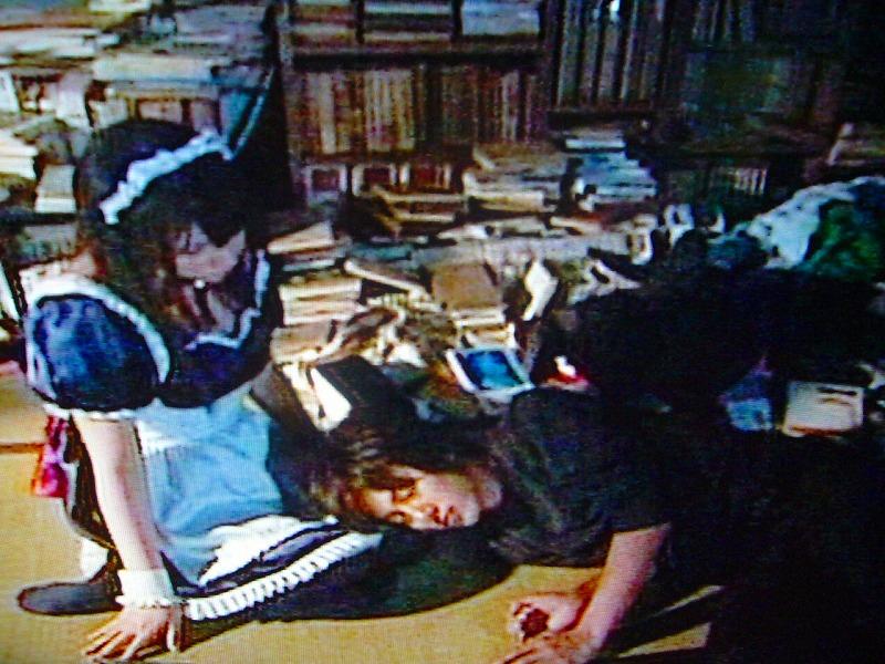 仲里依紗 ハチワンダイバー 膝枕에 대한 이미지 검색결과