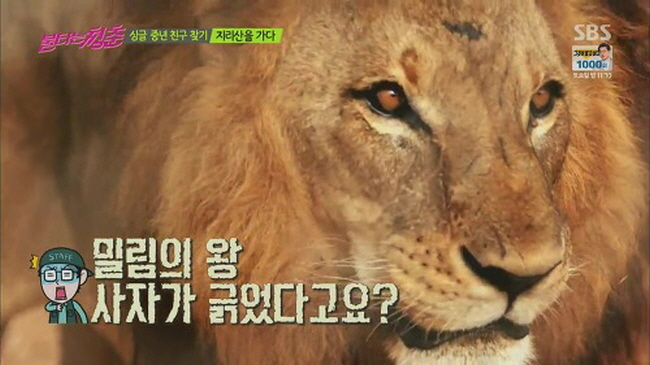 8 146 - 연예인들의 역대급 '허언증(?)' 사연 베스트 3