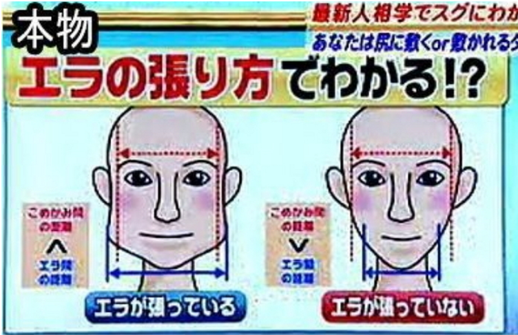 img 5a08e3a543e15 - '일본 방송에 나온 한국인 구별법' 사진의 '충격적' 진실