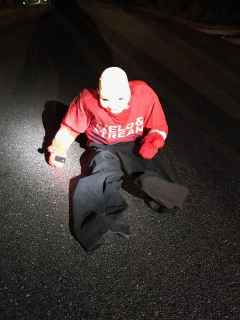 """paradise east 1 - Polícia avisa: Se você vir uma """"criança"""" sentada na estrada, fique no carro e mantenha as portas fechadas"""