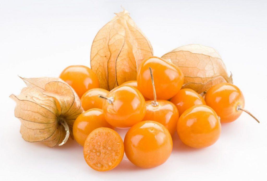 physalis jpg size custom crop 1086x0 1024x695 - Golden Berry: a frutinha milagrosa