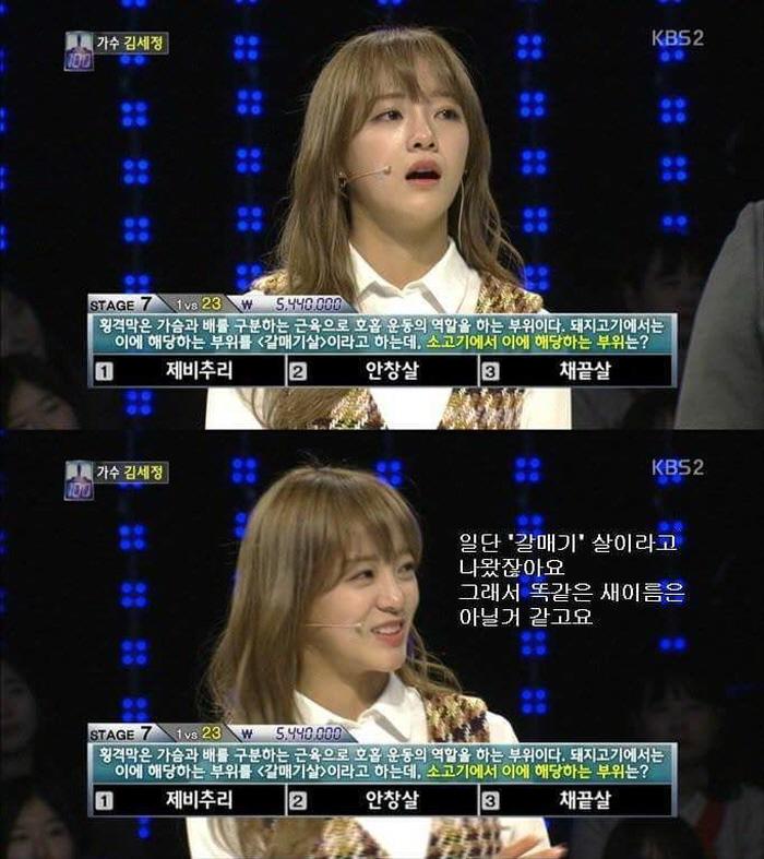 1 12 - '구구단' 김세정의 퀴즈 프로그램 레전드 (사진 8장)