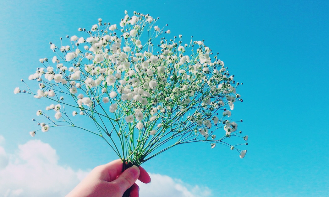 1487556228996 photo - カスミソウの花言葉が人気!その意味は?