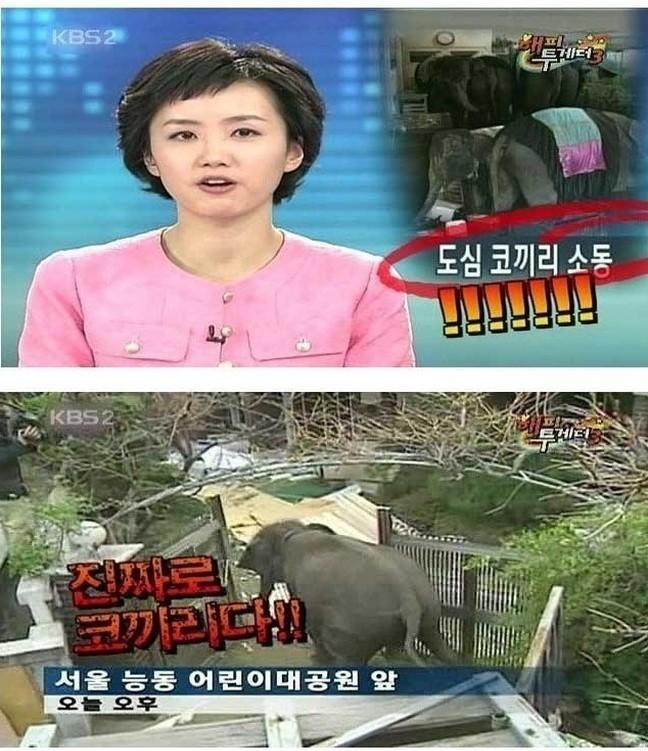 20 6 - 연예인들의 역대급 '허언증(?)' 사연 베스트 3