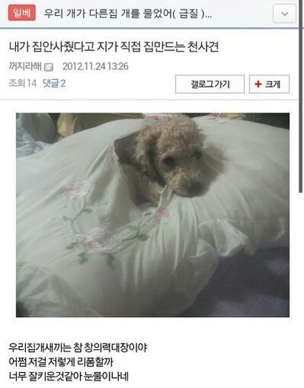 """29 13 - """"시간 파워 순삭!"""" 익명 게시판 캡쳐 모음 (사진 33+)"""