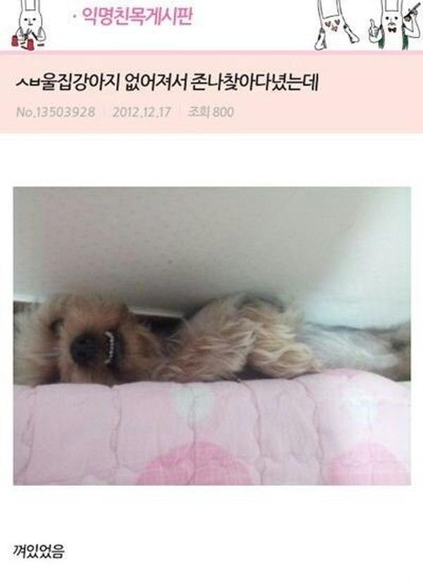 """31 17 - """"시간 파워 순삭!"""" 익명 게시판 캡쳐 모음 (사진 33+)"""