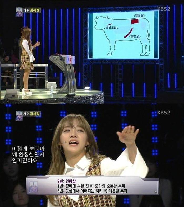 4 8 - '구구단' 김세정의 퀴즈 프로그램 레전드 (사진 8장)
