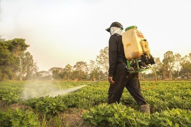 5a15d948b66c4 crop - Gran Bretaña ha prohibido el uso de plaguicidas que exterminan a las abejas