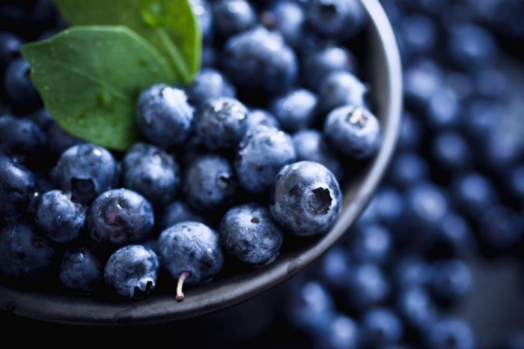blueberries improve concentration 1024x682 - 8 razones que te harán comer más arándanos