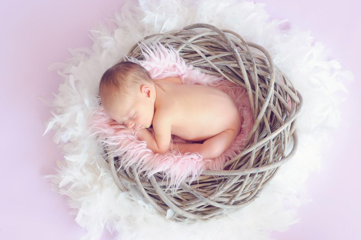 사람 꽃잎 어린이 담홍색 아가 생성물 유아 유아 아기 소녀 잠자는 아기