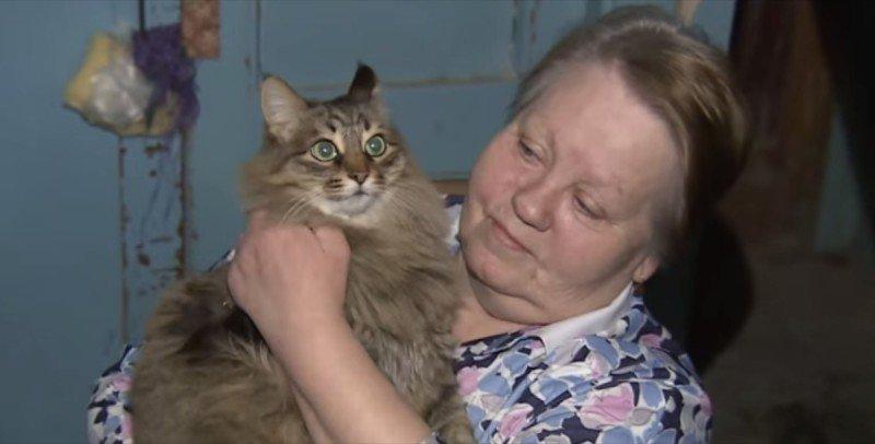 cat saves infant 3 2 - Un chat sauve la vie d'un bébé abandonné dans l'hiver glacial russe