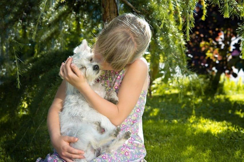 child girl dog small dog 161021 850x566 - Selon une étude, l'homme préfère le chien... à l'homme!