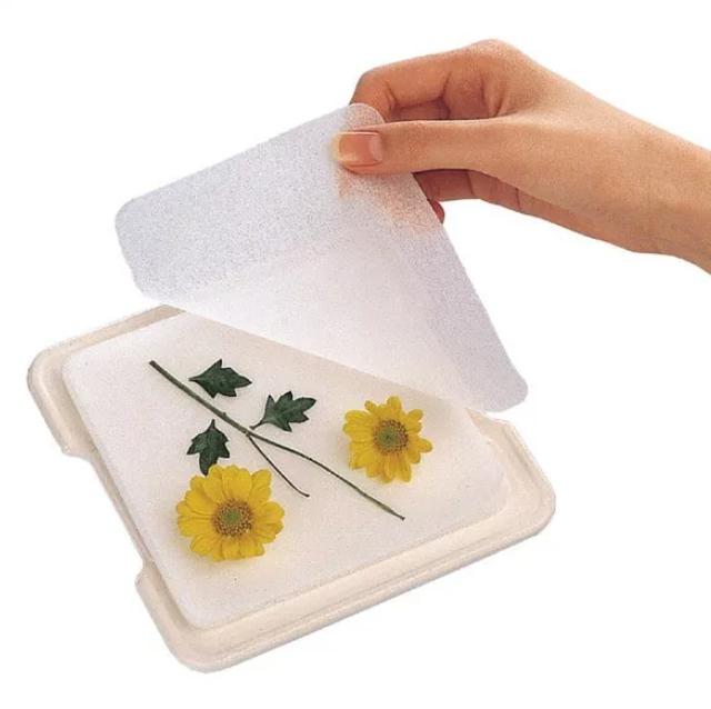 img 5a587226dedf6 - 未経験者でも超簡単に作れる!バラなどの押し花の作り方5選!