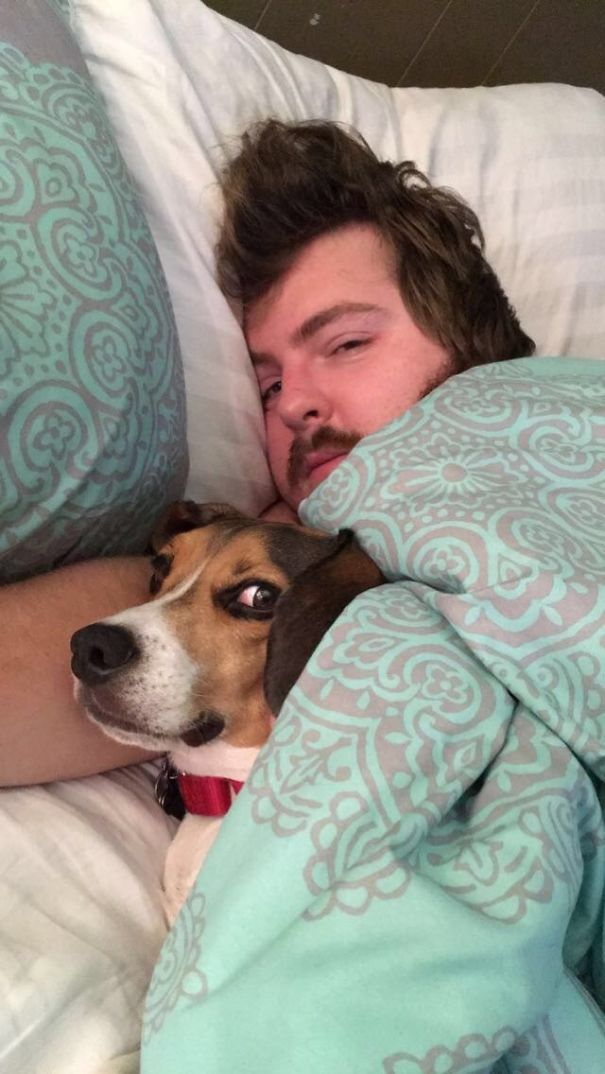 img 5a58bd0d4288d - 15+ Times Animals Hilariously Photobombed Their Owners