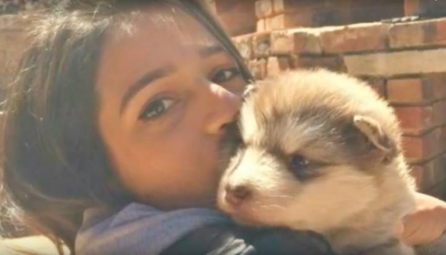 tydus4 - Mulher adota um filhotinho adorável, 1 ano depois, ela se surpreende