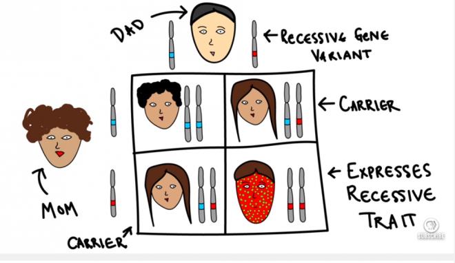 genetics - Los 3 casos más trágicos de incesto de la historia