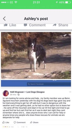 paul meg 3 - Hiker Forced To Leave His Dog Alone In The Mountain After The Storm Hits