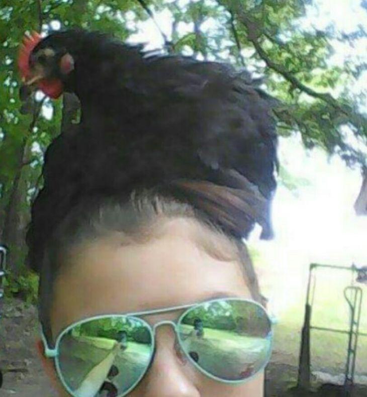 rooster4 - [Vidéo] Ce coq fonce à toute vitesse pour accueillir son amie à la sortie du bus!