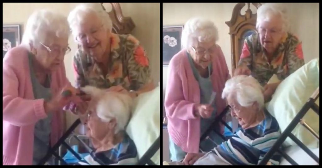 sisters comb siblings hair 1024x535 - This Cute Video Will Drag Your Attention. These Two Elderly Women Helping Their 97-Year-Old Sister Comb Her Hair In Hospice