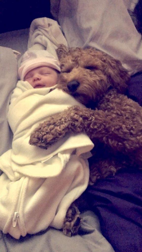 5a9801db0290d rmrpo94txi0z  605 577x1024 - 小孩和狗的組合跟本可愛加倍、療癒感也加倍,來看看這些孩子們和寵物狗的可愛互動!