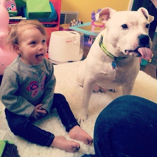 5a981e279955d 88v9ben  605 - 小孩和狗的組合跟本可愛加倍、療癒感也加倍,來看看這些孩子們和寵物狗的可愛互動!