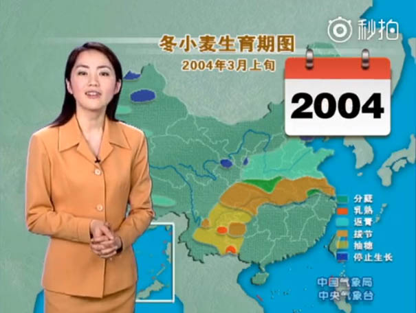 chinese tv presenter doesnt age looks young yang dan  0008 2004 - This Chinese Weather Woman Shocks the Whole World Because She Hasn't Aged For 22 Years