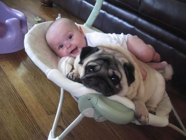 cute kids dogs best friends friendship 150 5a99009fb9f87  605 - 小孩和狗的組合跟本可愛加倍、療癒感也加倍,來看看這些孩子們和寵物狗的可愛互動!