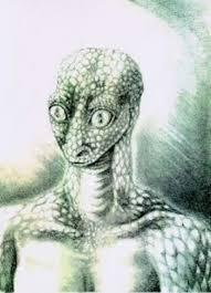 アルファ・ドラコニアン 宇宙人에 대한 이미지 검색결과