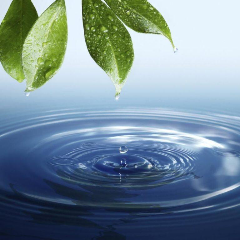 「雨水 飲み方」の画像検索結果