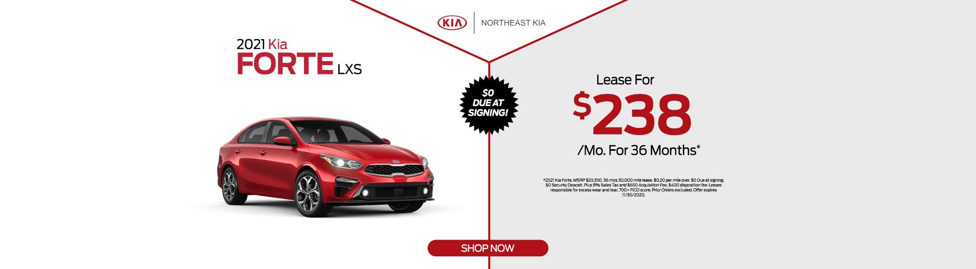 Kia Dealer In White Plains Ny Northeast Kia