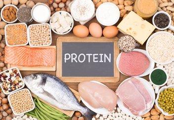 alimentos-proteinas.jpeg