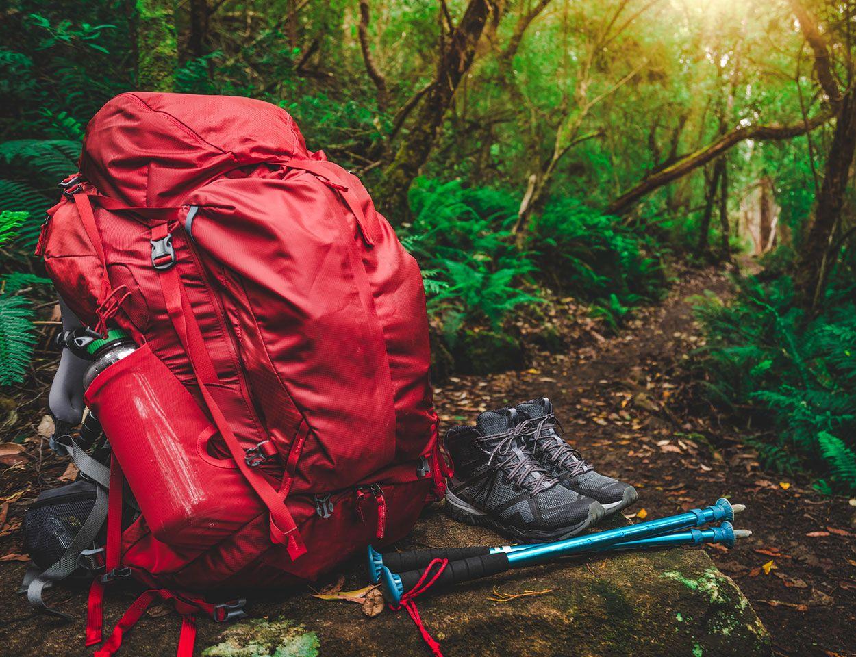 Leichter Wanderrucksack Daypack